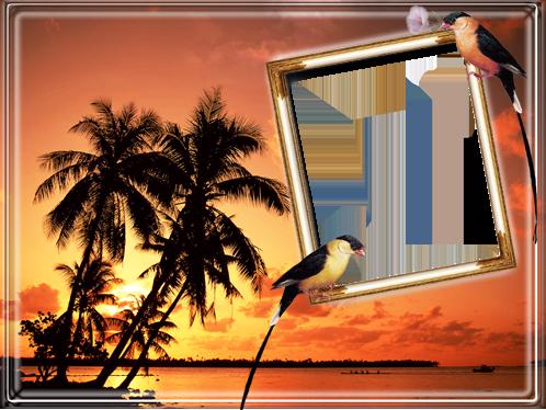 Marco Para Foto Atardecer En Una Isla Junto Al Mar - Marco Para Foto Atardecer En Una Isla Junto Al Mar