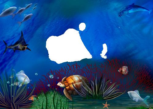 Marco Para Foto Delfines Tortugas Y Peces Bajo El Agua - Marco Para Foto Delfines Tortugas Y Peces Bajo El Agua
