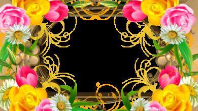 Marco Para Foto Eres Una Rosa En Medio De Flores 390x220 - Marco Para Foto Eres Una Rosa En Medio De Flores