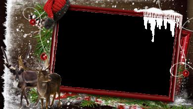 Marco Para Foto Esperando A Papá Noel En El Frío Bosque De Invierno 390x220 - Marco Para Foto Esperando A Papá Noel En El Frío Bosque De Invierno