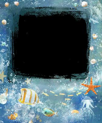 Marco Para Foto Estrella De Mar Y Pescado De Mar 336x405 - Marco Para Foto Estrella De Mar Y Pescado De Mar