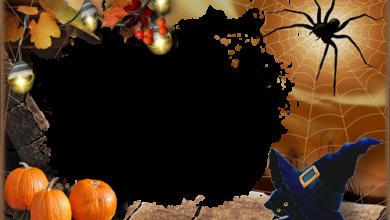 Marco Para Foto Halloween Con Gatito Negro 390x220 - Marco Para Foto Halloween Con Gatito Negro