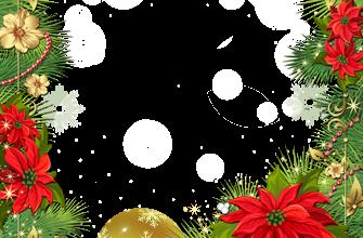 Marco Para Foto Se Levanta La Estrella De Navidad 335x220 - Marco Para Foto Se Levanta La Estrella De Navidad