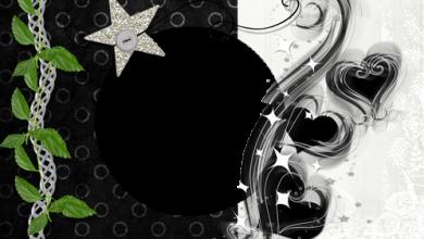 Marcos Para Foto Corazones Maravillosos Y Estrella Plateada 390x220 - Marcos Para Foto Corazones Maravillosos Y Estrella Plateada