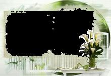 Marcos Para Foto Flores De Loto Blanco 220x150 - Marcos Para Foto Flores De Loto Blanco