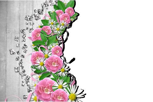 Marcos Para Foto Flores De Mandolina - Marcos Para Foto Flores De Mandolina