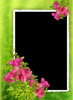 Marcos Para Foto Flores Tiernas 298x405 - Marcos Para Foto Flores Tiernas