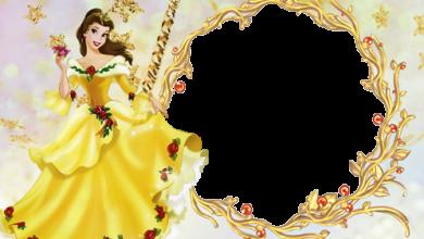 Marcos Para Foto La Princesa Encantada 390x220 - Marcos Para Foto La Princesa Encantada