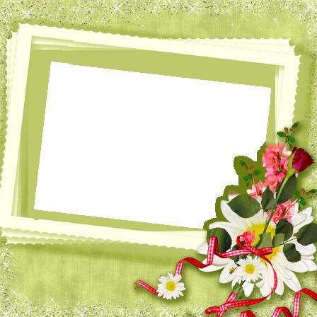 Marcos Para Foto Románticas Rosas Rojas Y Blancas - Marcos Para Foto Románticas Rosas Rojas Y Blancas
