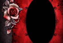 marco para fotos de rosa roja y negra 220x150 - Marco para fotos de rosa roja y negra