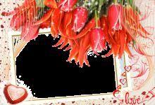 Majestad las fotos más bellas de encantador y romántico 220x150 - Majestad las fotos más bellas de encantador y romántico