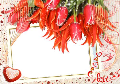 Majestad las fotos más bellas de encantador y romántico - Majestad las fotos más bellas de encantador y romántico