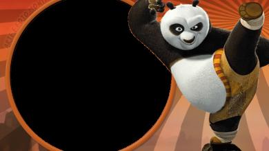Photo of Marco De Foto Kung Fu Panda 6