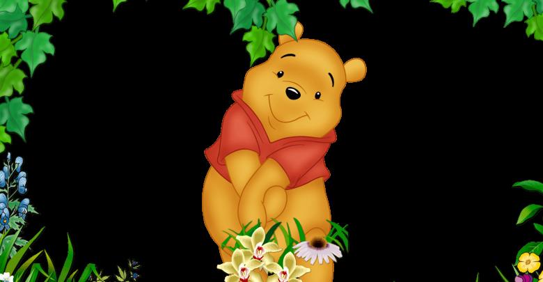 Marco De Foto Winnie The Pooh c 780x405 - Marco De Foto Winnie The Pooh c