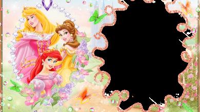 Marco Foto Princesas Disney 390x220 - Marco Foto Princesas Disney