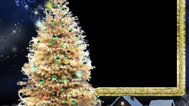 Marco Para Foto El Árbol De Navidad Más Bello Y Bello Y La Cabeza Del Año. 390x220 - Marco Para Foto El Árbol De Navidad Más Bello Y Bello Y La Cabeza Del Año.