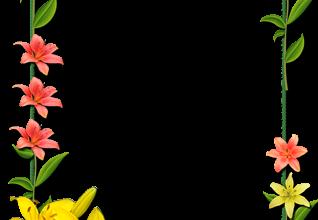 Marco Para Foto Flores Lilas Rojas Y Amarillas 318x220 - Marco Para Foto Flores Lilas Rojas Y Amarillas