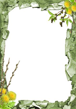 Marco Para Foto Flores Mariposas Y Plantaciones Verdes - Marco Para Foto Flores Mariposas Y Plantaciones Verdes
