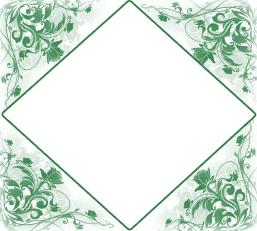 Marco Para Foto Flores Verdes De Lujo - Marco Para Foto Flores Verdes De Lujo