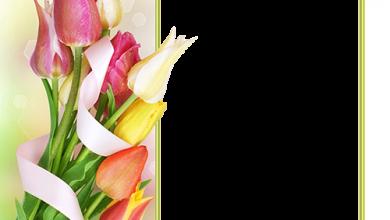 Marco Para Foto Hermoso Y Suave Ramo De Flores De Primavera 390x220 - Marco Para Foto Hermoso Y Suave Ramo De Flores De Primavera