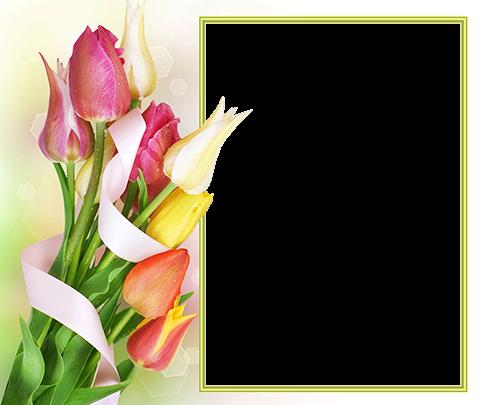 Marco Para Foto Hermoso Y Suave Ramo De Flores De Primavera 500x405 - Marco Para Foto Hermoso Y Suave Ramo De Flores De Primavera