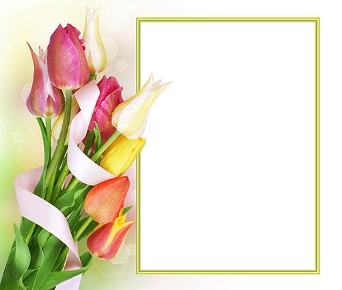 Marco Para Foto Hermoso Y Suave Ramo De Flores De Primavera - Marco Para Foto Hermoso Y Suave Ramo De Flores De Primavera