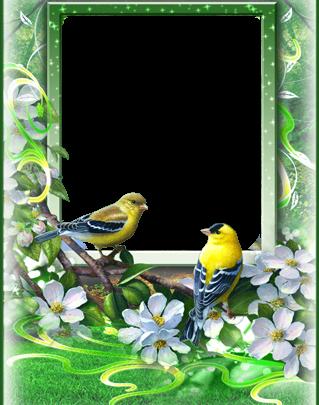 Marco Para Foto Las Aves Más Bellas Del Amor Y La Primavera. 319x405 - Marco Para Foto Las Aves Más Bellas Del Amor Y La Primavera.