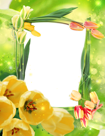 Marco Para Foto Las Flores De Tulipán Más Bellas Para Cada Amante. - Marco Para Foto Las Flores De Tulipán Más Bellas Para Cada Amante.