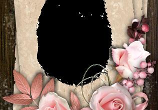 Marco Para Foto Las Flores Son Muy Finas De Color Rosa 316x220 - Marco Para Foto Las Flores Son Muy Finas De Color Rosa