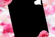 Marco Para Foto Las Rosas Y Flores Rojas Más Bellas Para El Matrimonio. 220x150 - Marco Para Foto Las Rosas Y Flores Rojas Más Bellas Para El Matrimonio.