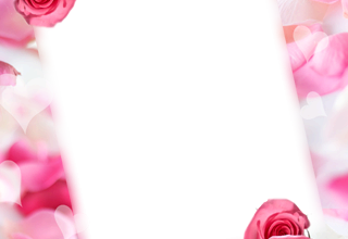 Marco Para Foto Las Rosas Y Flores Rojas Más Bellas Para El Matrimonio. 320x220 - Marco Para Foto Las Rosas Y Flores Rojas Más Bellas Para El Matrimonio.