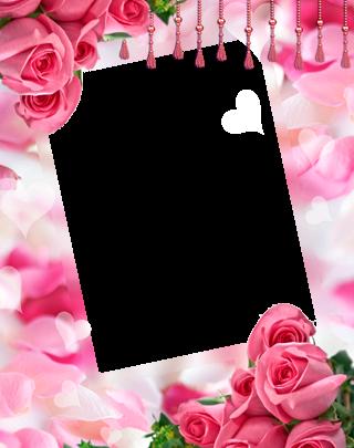 Marco Para Foto Las Rosas Y Flores Rojas Más Bellas Para El Matrimonio. 320x405 - Marco Para Foto Las Rosas Y Flores Rojas Más Bellas Para El Matrimonio.