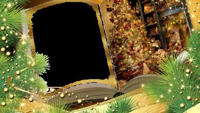 Marco Para Foto Libro De Año Nuevo 390x220 - Marco Para Foto Libro De Año Nuevo