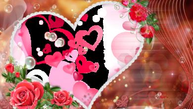 Marco Para Foto Los Momentos Más Felices Hermosos Corazones Y Hermosas Flores Rojas 390x220 - Marco Para Foto Los Momentos Más Felices Hermosos Corazones Y Hermosas Flores Rojas