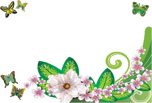 Marco Para Foto Mariposas Y Rosas Verdes - Marco Para Foto Mariposas Y Rosas Verdes