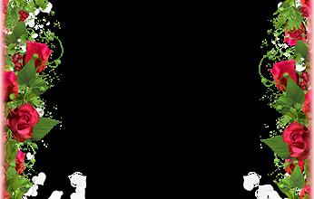 Marco Para Foto Obra Maestra De Flores Para El Día De San Valentín 346x220 - Marco Para Foto Obra Maestra De Flores Para El Día De San Valentín