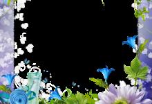 Marco Para Foto Paraíso De Rosas Azules Y Violetas 220x150 - Marco Para Foto Paraíso De Rosas Azules Y Violetas