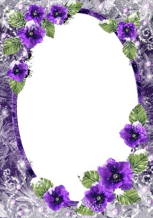 Marco Para Foto Románticas Flores De Invierno - Marco Para Foto Románticas Flores De Invierno