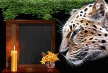 Marco Para Foto Tigre De La Noche 220x150 - Marco Para Foto Tigre De La Noche