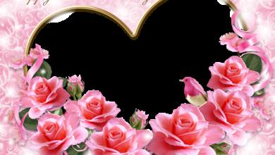 Marco Para Foto Una Imagen De Una Rosa Rosa Y Tarjetas Rojas Para El Día De San Valentín 390x220 - Marco Para Foto Una Imagen De Una Rosa Rosa Y Tarjetas Rojas Para El Día De San Valentín