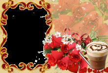 Rosa roja del amor 220x150 - Rosa roja del amor