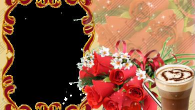 Rosa roja del amor 390x220 - Rosa roja del amor
