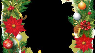 Marco de fotos de Navidad con flor de pascua 390x220 - Marco de fotos de Navidad con flor de pascua