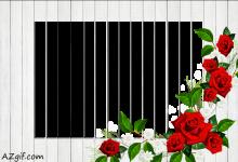 pared de madera blanca marco de foto 220x150 - pared de madera blanca marco de foto