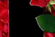 Siempre y para siempre feliz día de San Valentín 220x150 - Siempre y para siempre feliz día de San Valentín