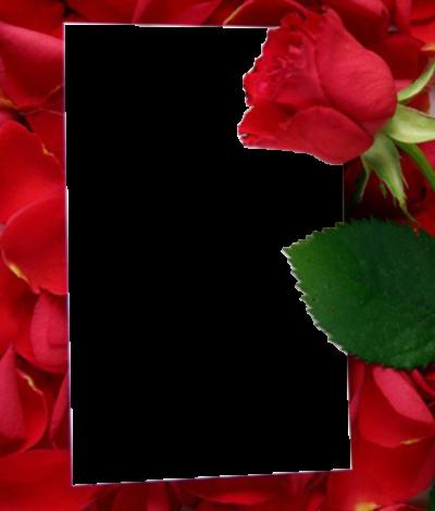 Siempre y para siempre feliz día de San Valentín 400x470 - Siempre y para siempre feliz día de San Valentín
