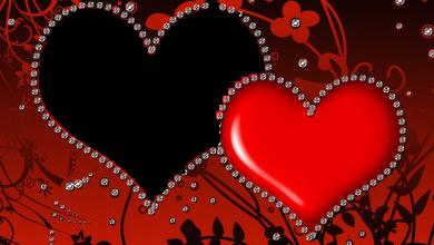 mi amor macros 390x220 - Mi Amor Macros