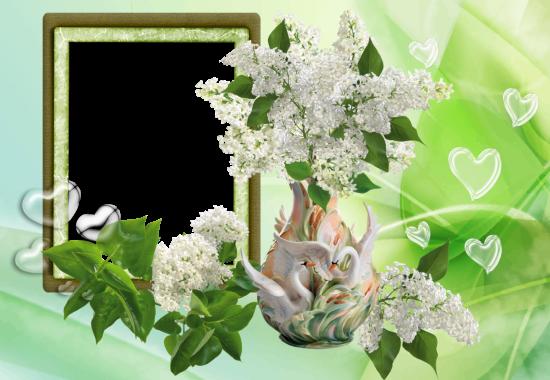 Bouquet of jasmine roses love photo frame - Bouquet of jasmine roses love photo frame