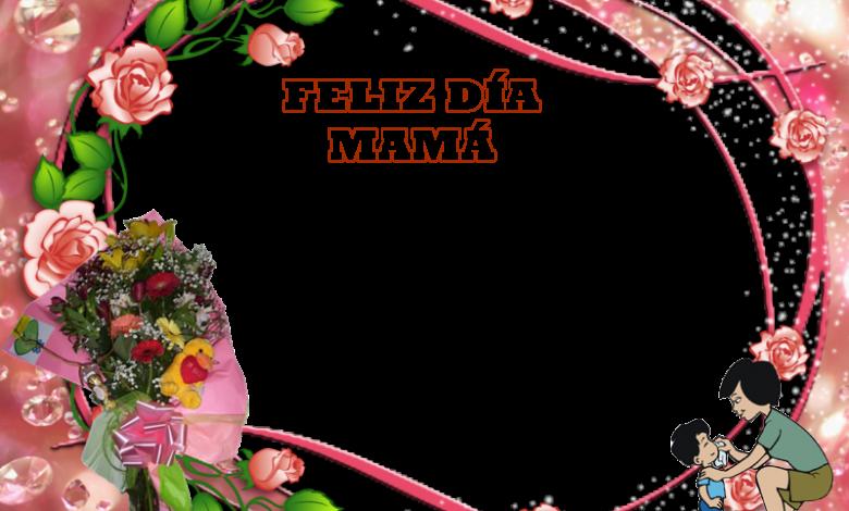 Feliz dia de la Madre 780x470 - Feliz dia de la Madre