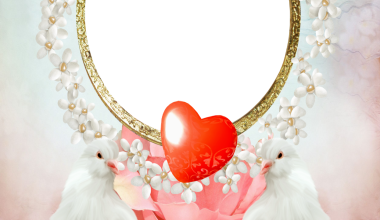 Romantic love birds love photo frame 380x220 - Romantic love birds love photo frame